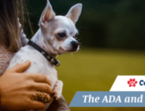 What is the Americans With Disabilities Act (ADA Act)?