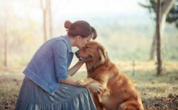 Part of the Pack: Ways of Knowing Your Dog Trusts You